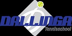 Tennisschool Dallinga Logo